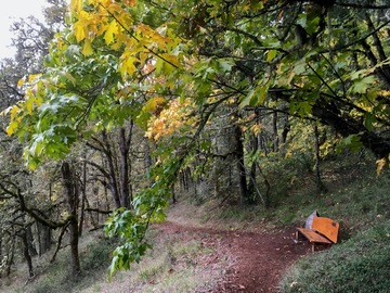 Adventure: OR | Hike | Informative Ecosystems and Nature Hike