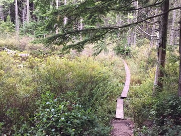 "Adventure: WA | Hike | Cedar Lakes ""Lookout"" Trail Day hike or Overnight"