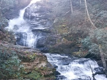 Adventure: CA | Hike | Mud Creek Hike