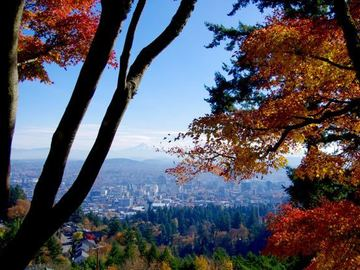 Adventure: OR | Hike | A Walk on Portland's Wild Side