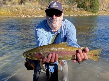 Adventure: Animas Springs River Ranch (Guided)